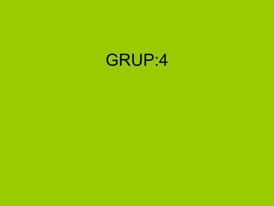 GRUP:4