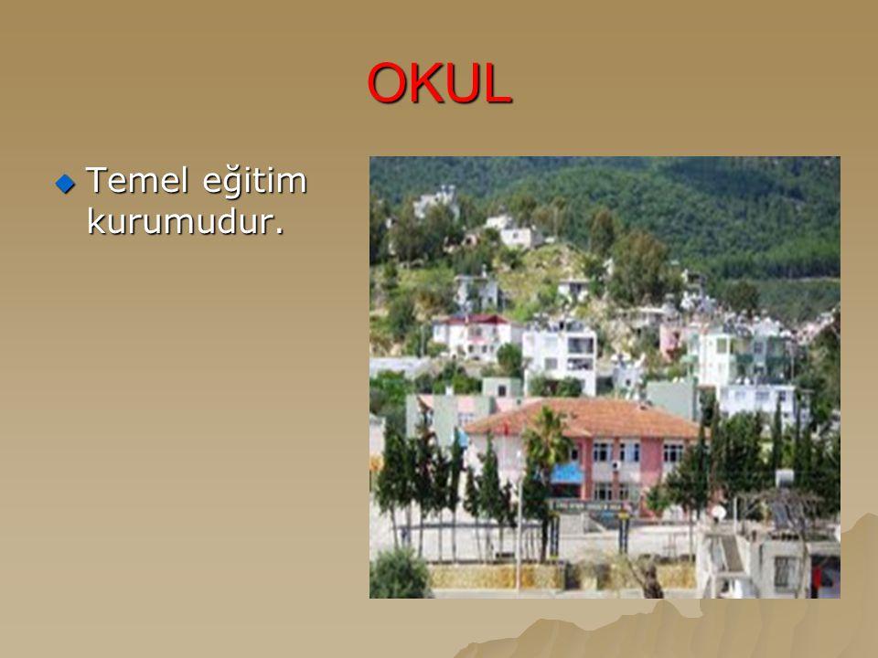 OKUL Temel eğitim kurumudur.