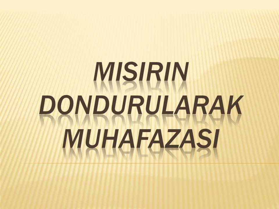 MISIRIN DONDURULARAK MUHAFAZASI