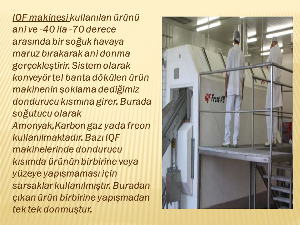 IQF makinesi kullanılan ürünü ani ve -40 ila -70 derece arasında bir soğuk havaya maruz bırakarak ani donma gerçekleştirir.