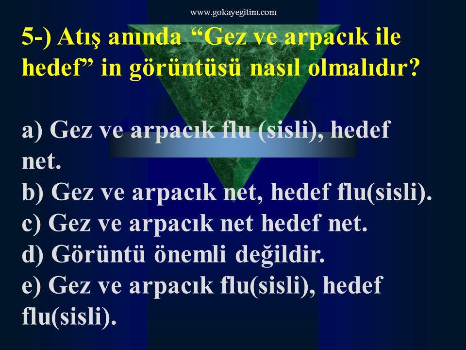 a) Gez ve arpacık flu (sisli), hedef net.