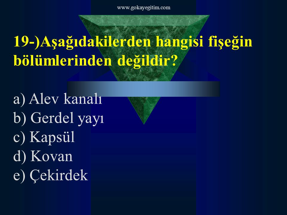 19-)Aşağıdakilerden hangisi fişeğin bölümlerinden değildir