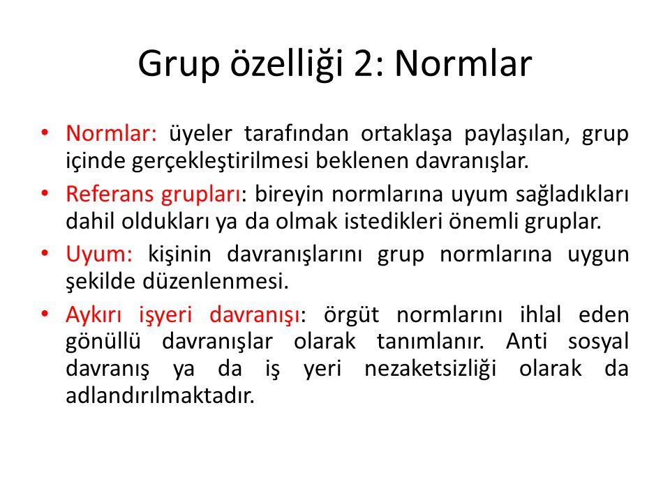 Grup özelliği 2: Normlar
