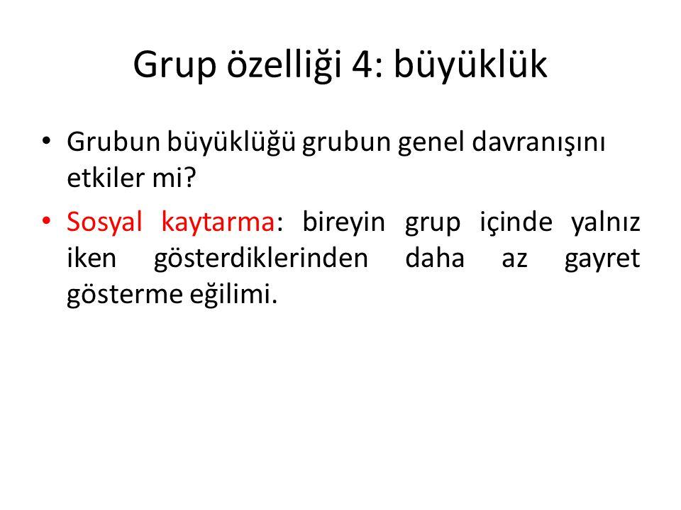 Grup özelliği 4: büyüklük