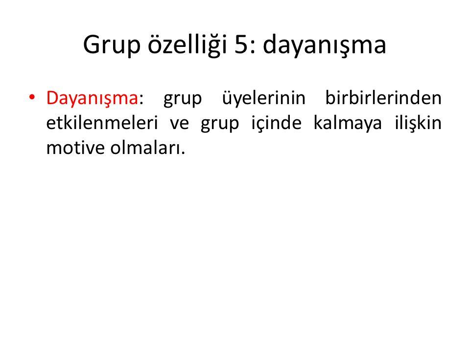 Grup özelliği 5: dayanışma