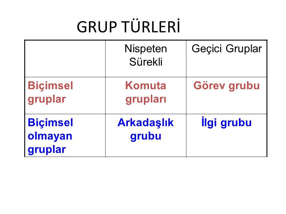 GRUP TÜRLERİ Nispeten Sürekli Geçici Gruplar Biçimsel gruplar