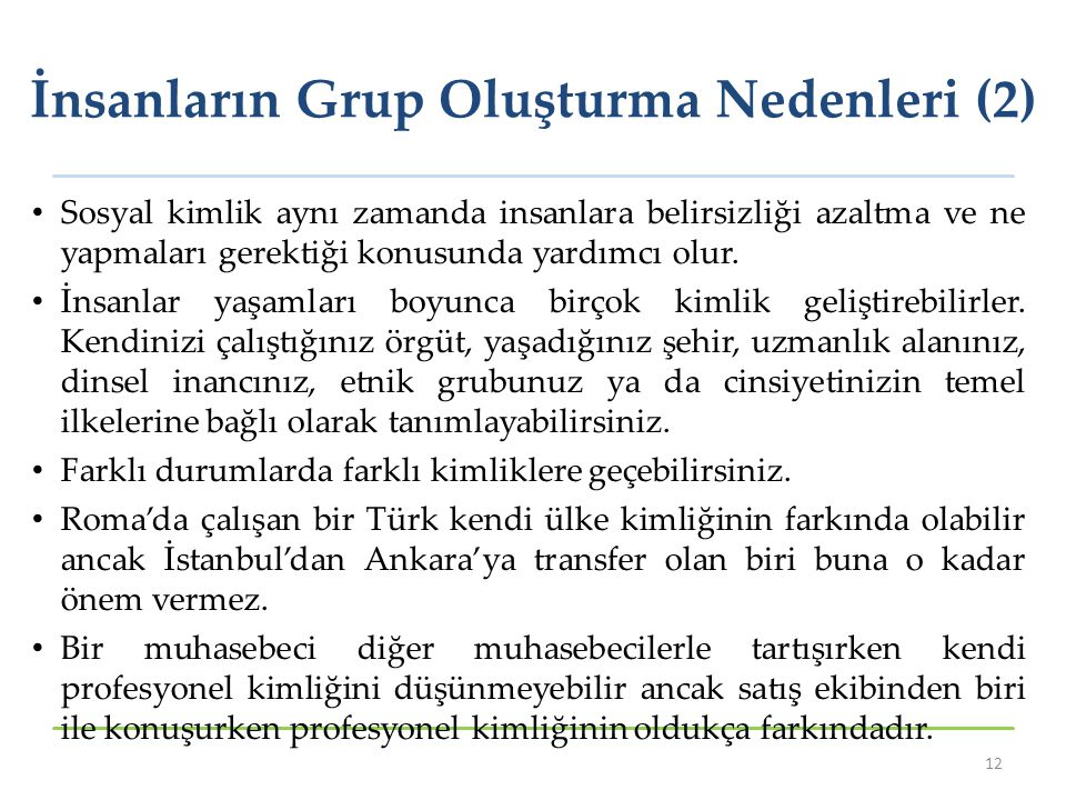 İnsanların Grup Oluşturma Nedenleri (2)