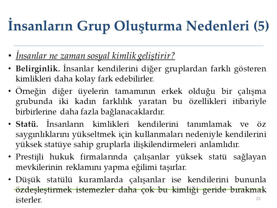 İnsanların Grup Oluşturma Nedenleri (5)
