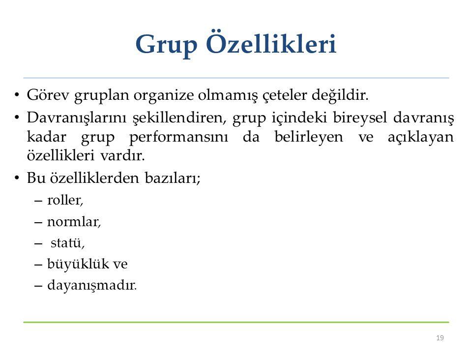 Grup Özellikleri Görev gruplan organize olmamış çeteler değildir.