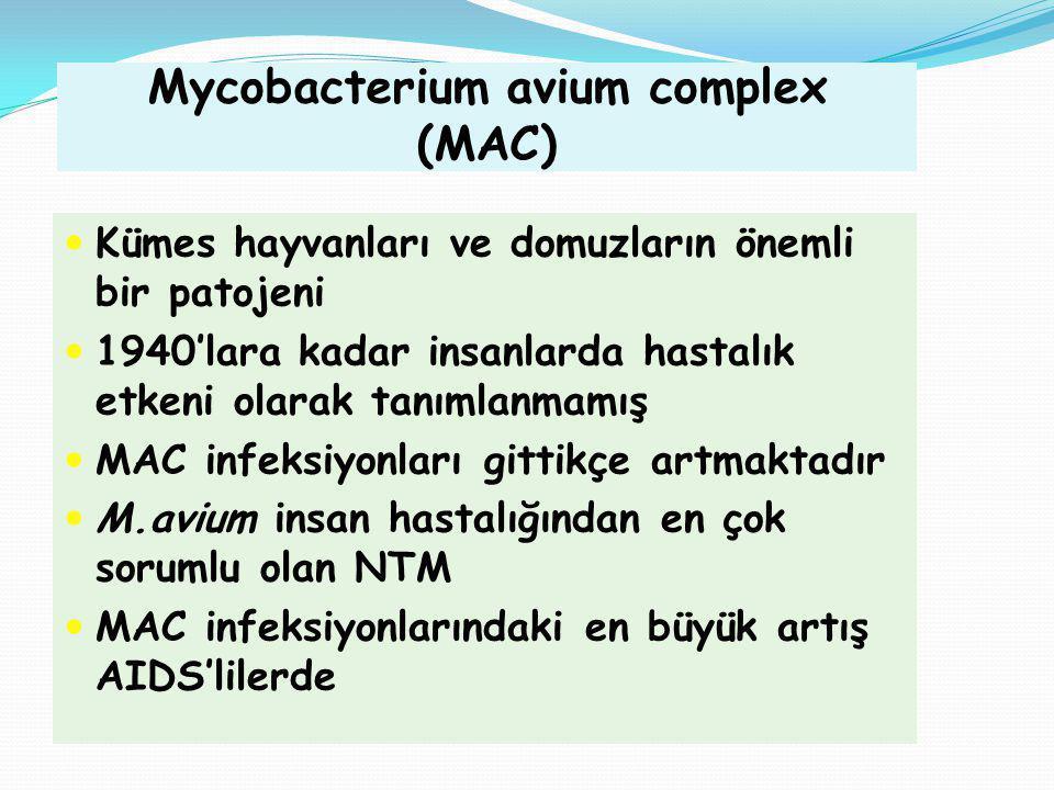 Mycobacterium avium complex (MAC)