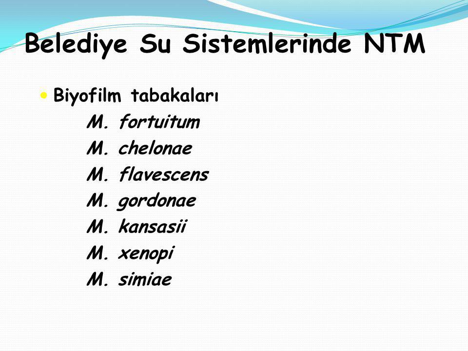 Belediye Su Sistemlerinde NTM