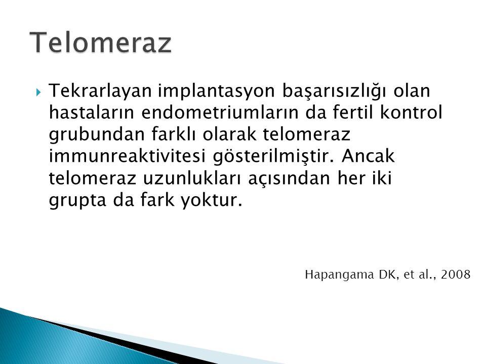 Telomeraz