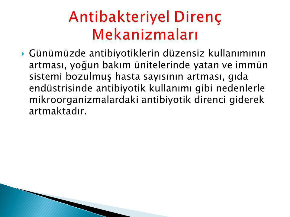 Antibakteriyel Direnç Mekanizmaları