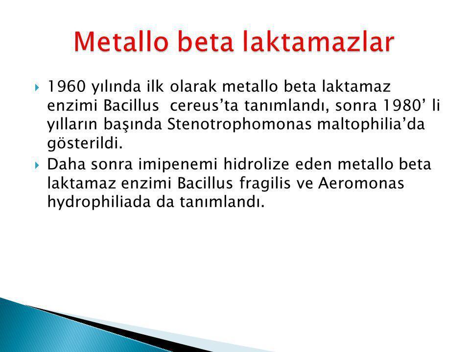 Metallo beta laktamazlar