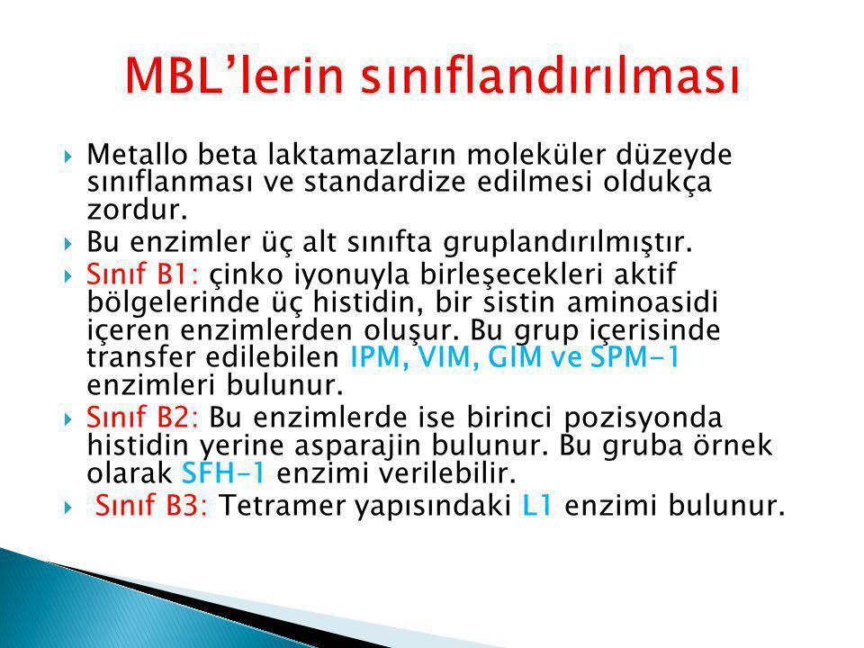 MBL'lerin sınıflandırılması