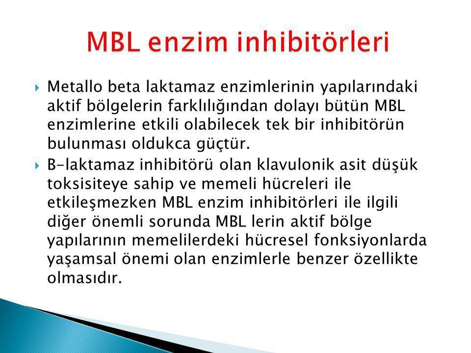 MBL enzim inhibitörleri