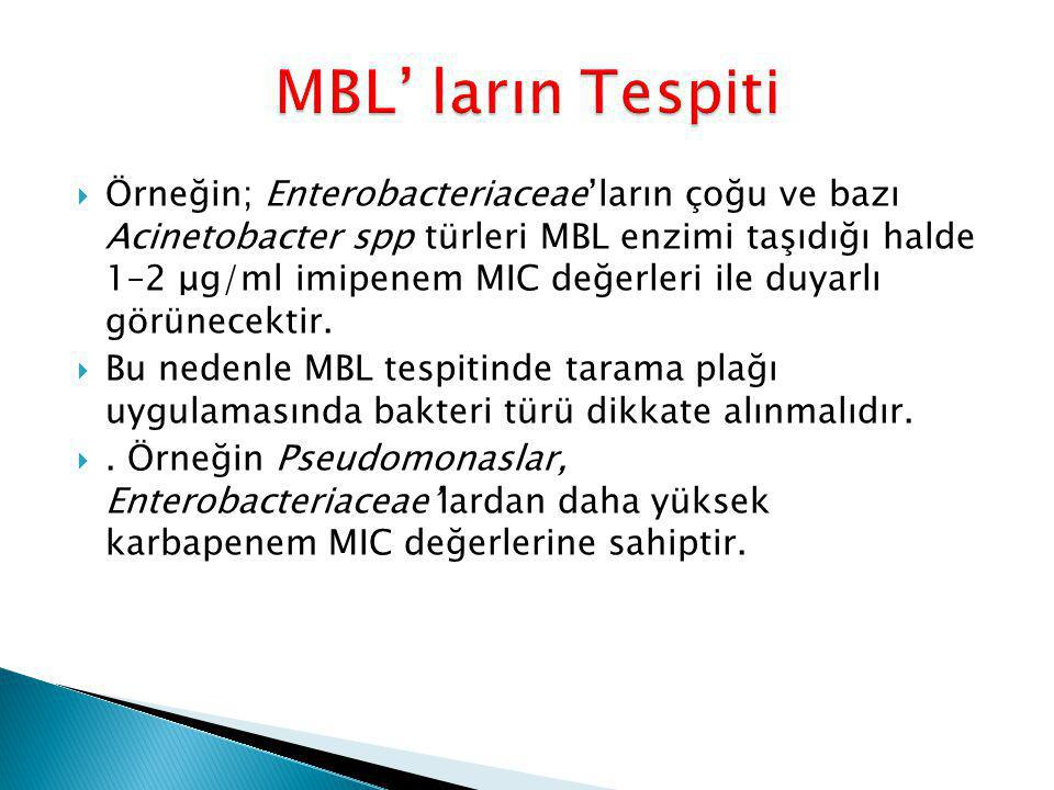 MBL' ların Tespiti
