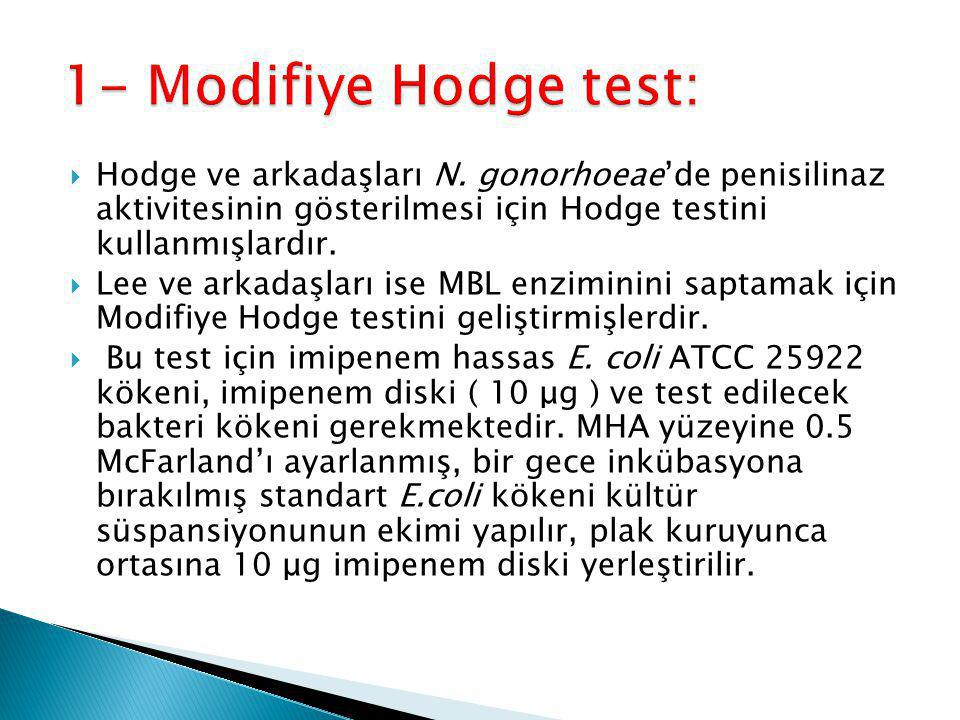 1- Modifiye Hodge test: Hodge ve arkadaşları N. gonorhoeae'de penisilinaz aktivitesinin gösterilmesi için Hodge testini kullanmışlardır.