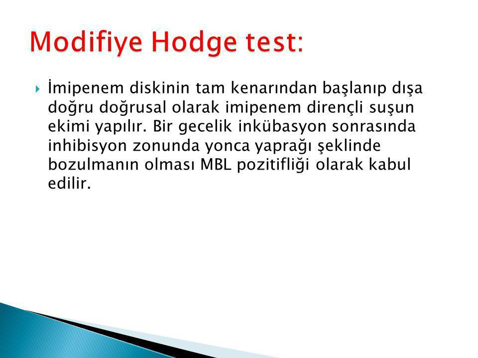 Modifiye Hodge test: