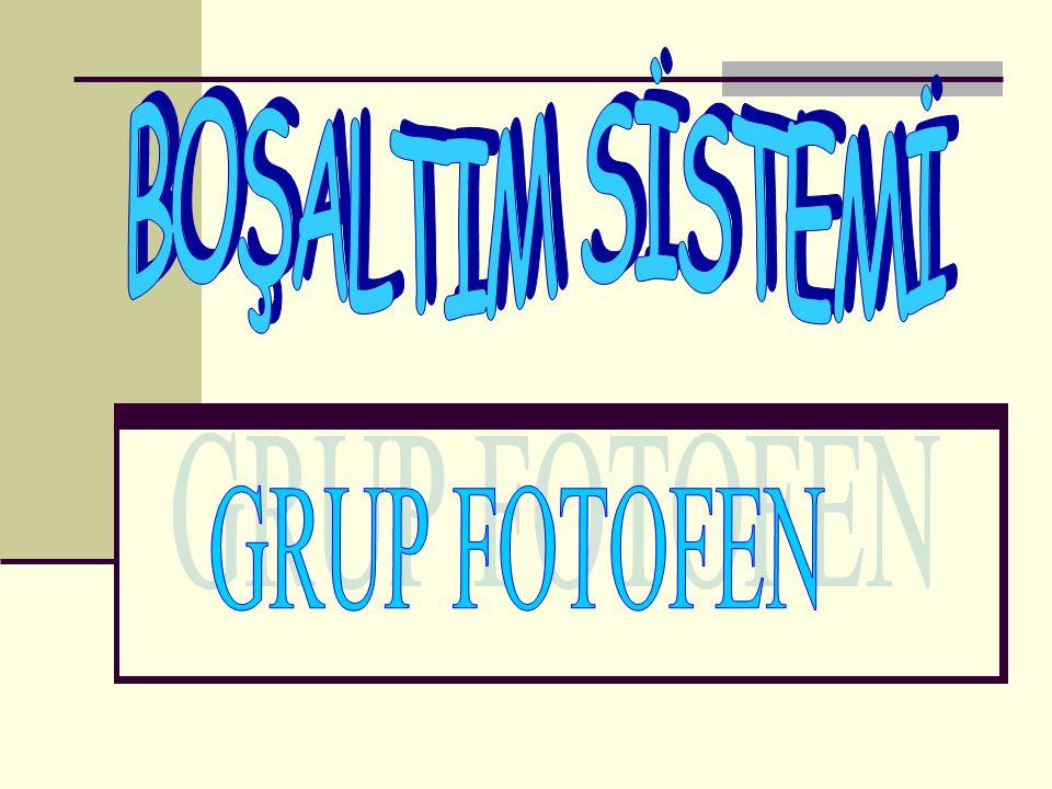 BOŞALTIM SİSTEMİ GRUP FOTOFEN