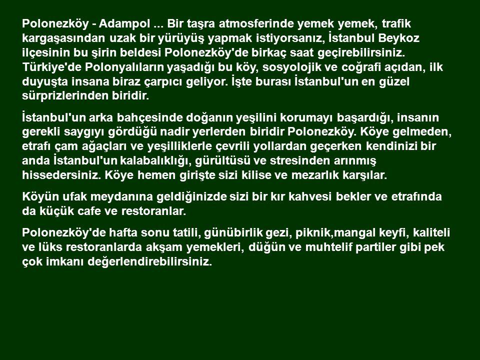 Polonezköy - Adampol ... Bir taşra atmosferinde yemek yemek, trafik kargaşasından uzak bir yürüyüş yapmak istiyorsanız, İstanbul Beykoz ilçesinin bu şirin beldesi Polonezköy de birkaç saat geçirebilirsiniz. Türkiye de Polonyalıların yaşadığı bu köy, sosyolojik ve coğrafi açıdan, ilk duyuşta insana biraz çarpıcı geliyor. İşte burası İstanbul un en güzel sürprizlerinden biridir.