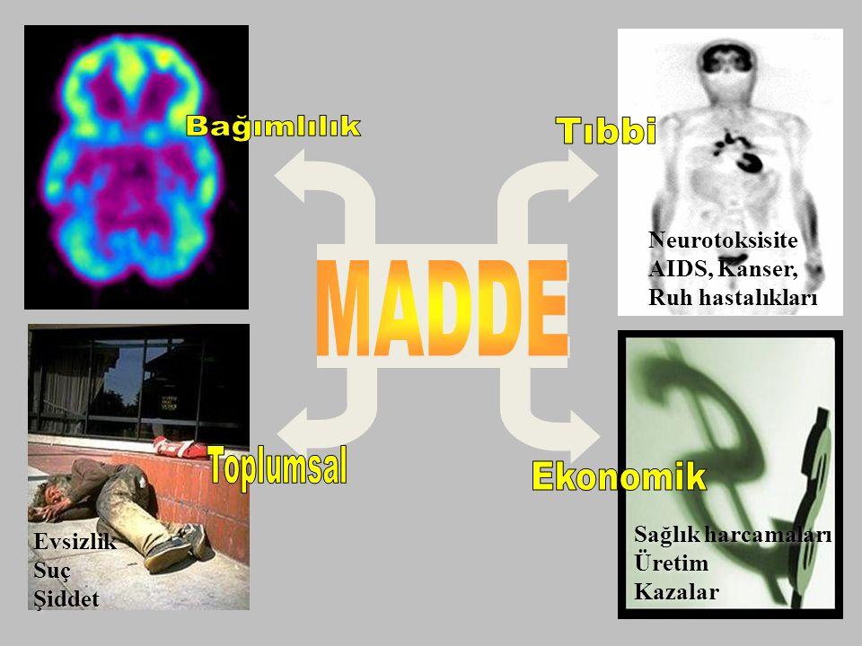 Bağımlılık Tıbbi MADDE Toplumsal Ekonomik Neurotoksisite AIDS, Kanser,