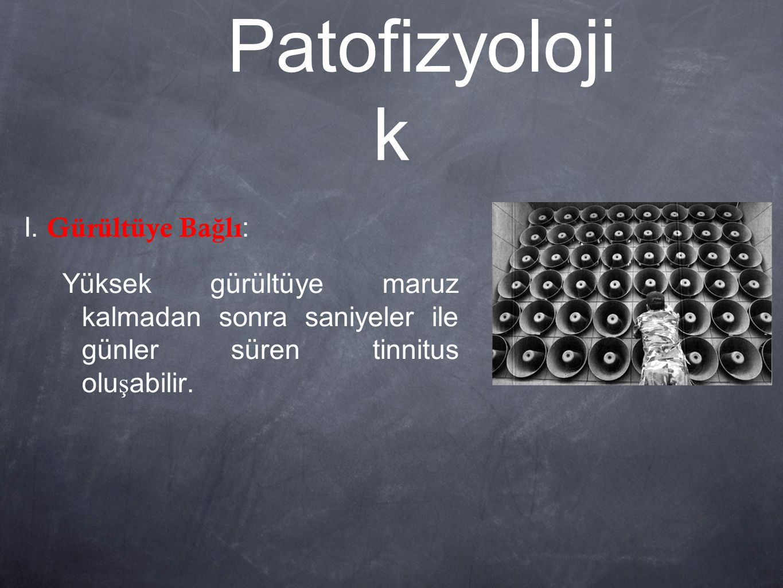 Patofizyolojik I. Gürültüye Bağlı: