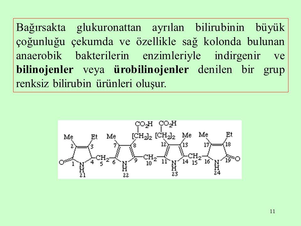 Bağırsakta glukuronattan ayrılan bilirubinin büyük çoğunluğu çekumda ve özellikle sağ kolonda bulunan anaerobik bakterilerin enzimleriyle indirgenir ve bilinojenler veya ürobilinojenler denilen bir grup renksiz bilirubin ürünleri oluşur.