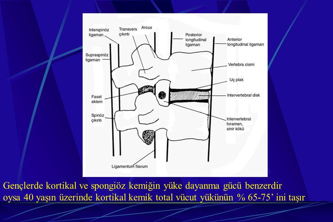Gençlerde kortikal ve spongiöz kemiğin yüke dayanma gücü benzerdir
