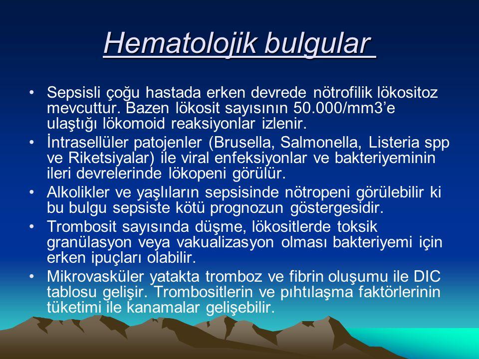 Hematolojik bulgular