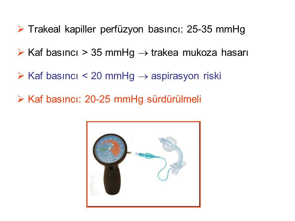 Trakeal kapiller perfüzyon basıncı: 25-35 mmHg