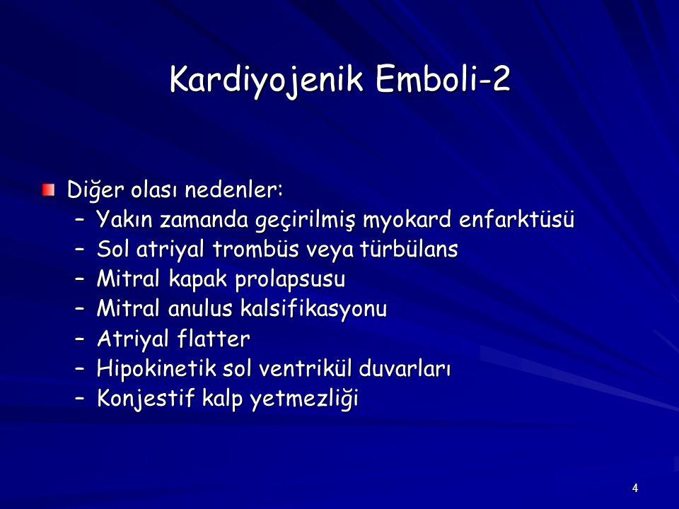 Kardiyojenik Emboli-2 Diğer olası nedenler: