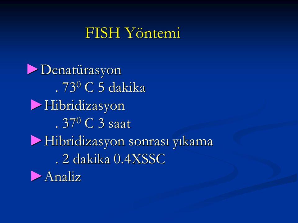 FISH Yöntemi ►Denatürasyon. 730 C 5 dakika ►Hibridizasyon