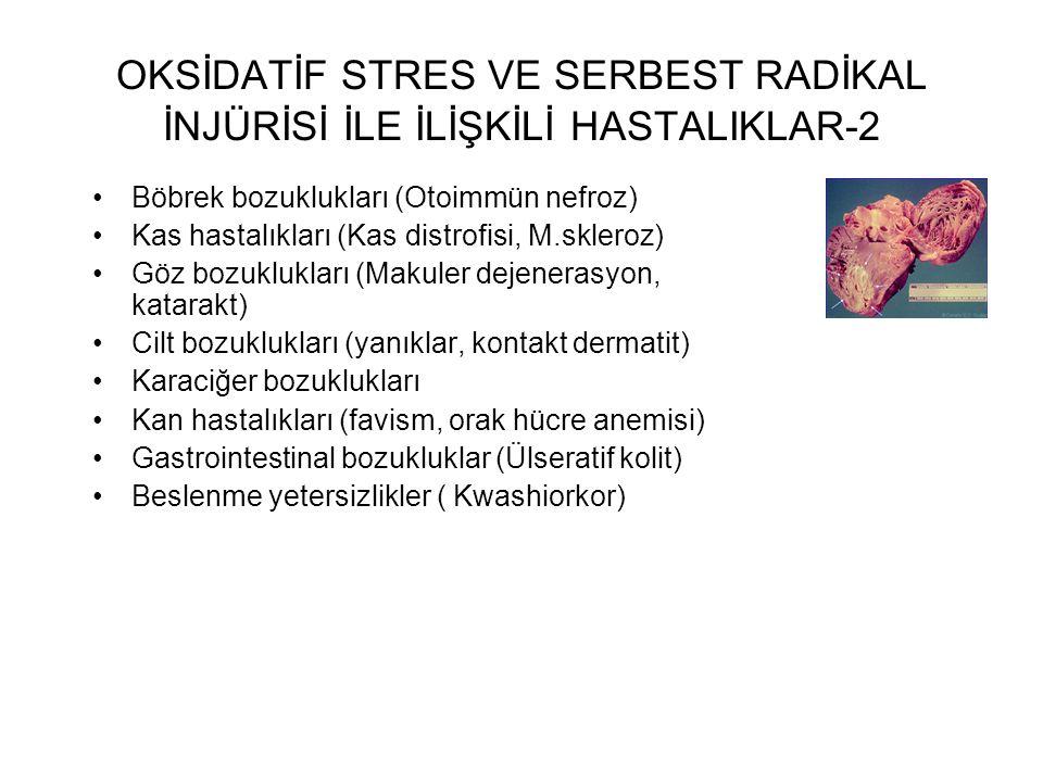 OKSİDATİF STRES VE SERBEST RADİKAL İNJÜRİSİ İLE İLİŞKİLİ HASTALIKLAR-2