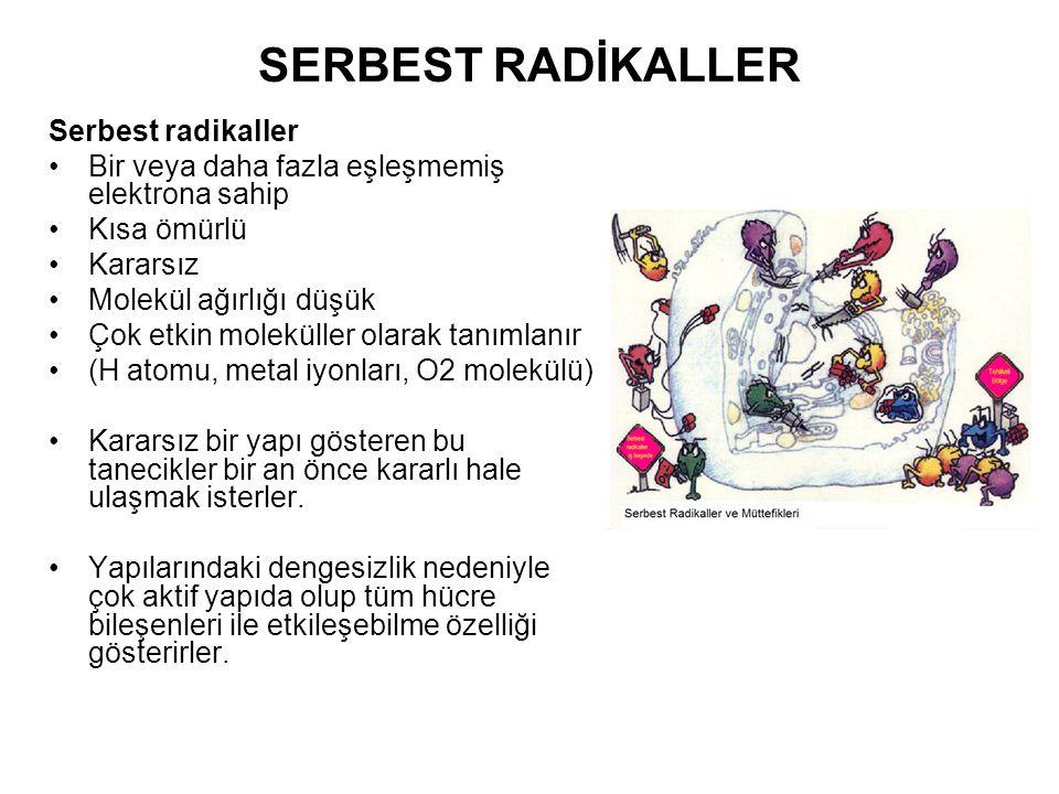 SERBEST RADİKALLER Serbest radikaller