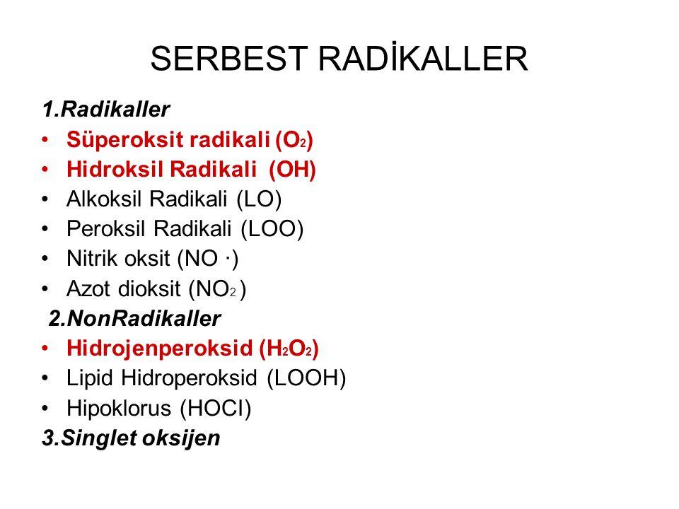 SERBEST RADİKALLER 1.Radikaller Süperoksit radikali (O2)