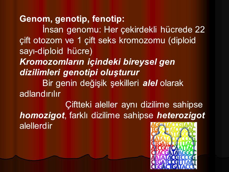 Genom, genotip, fenotip: