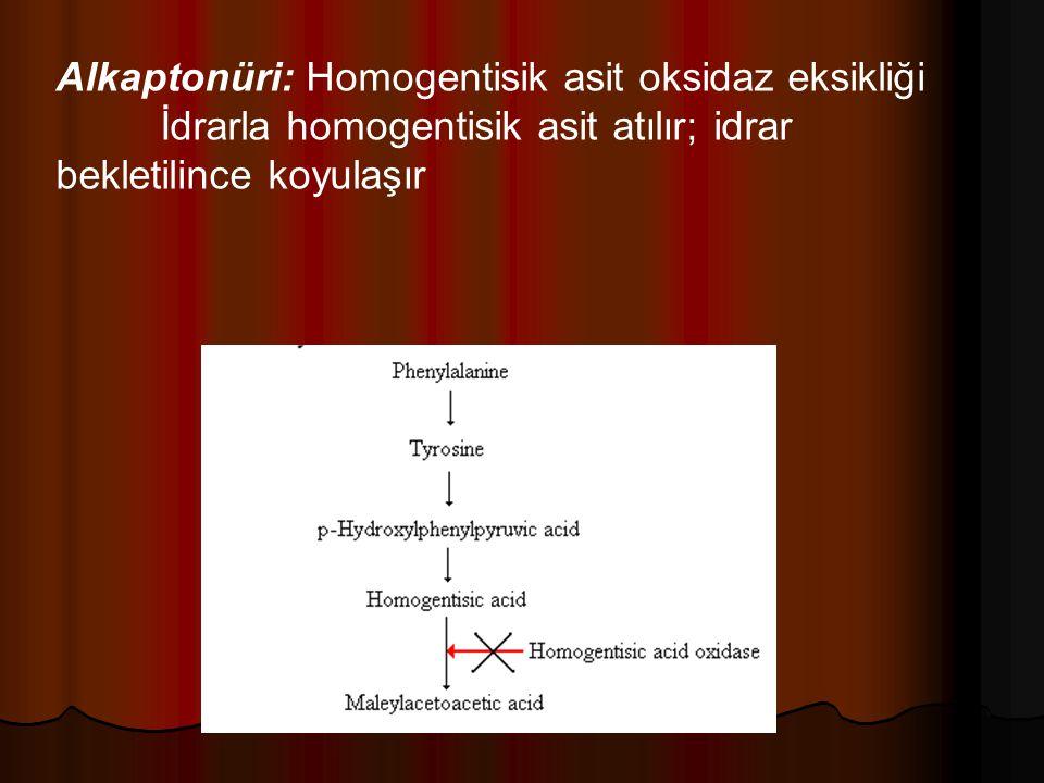 Alkaptonüri: Homogentisik asit oksidaz eksikliği