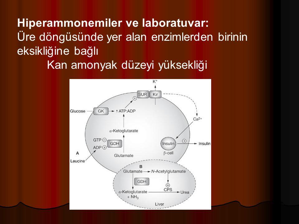 Hiperammonemiler ve laboratuvar: