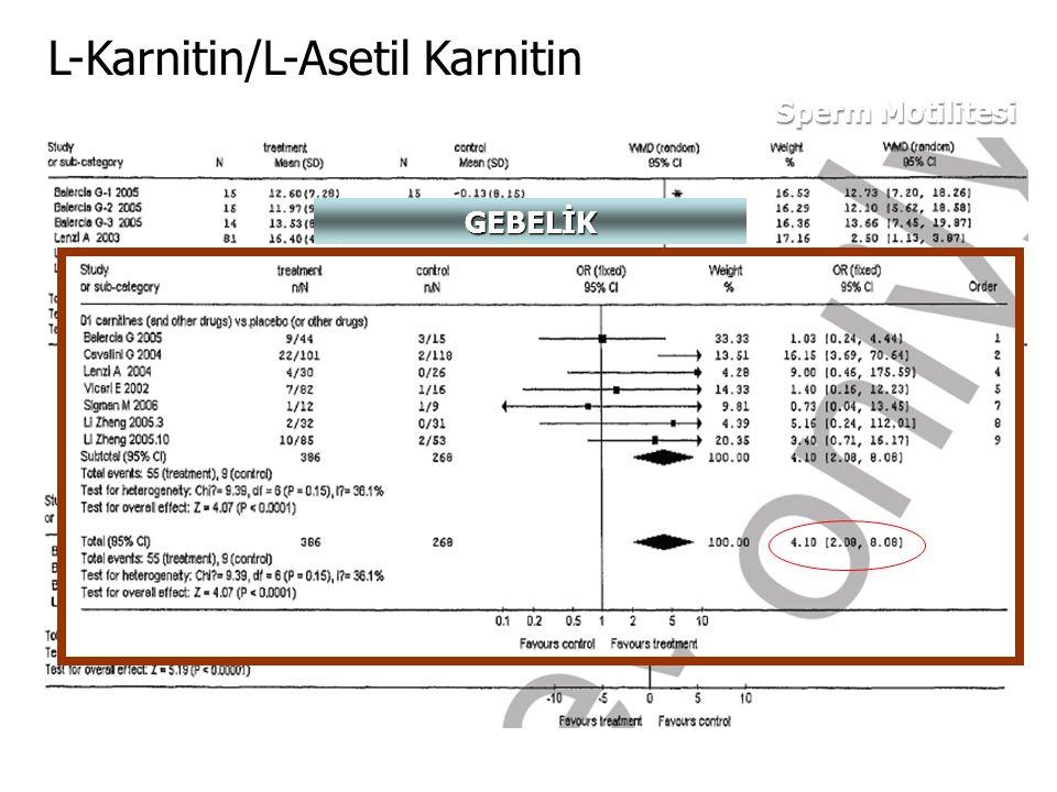 L-Karnitin/L-Asetil Karnitin