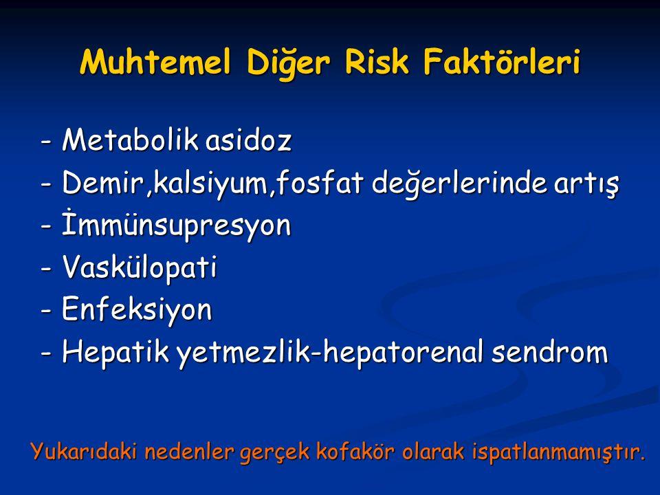 Muhtemel Diğer Risk Faktörleri
