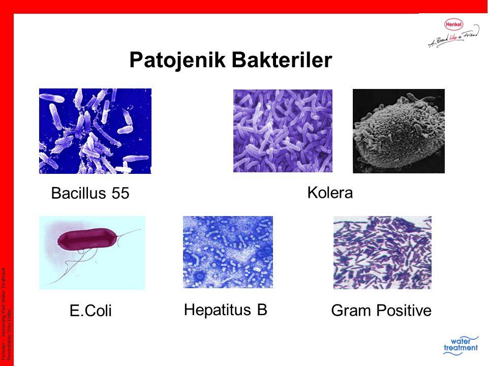 Patojenik Bakteriler Bacillus 55 Kolera E.Coli Hepatitus B