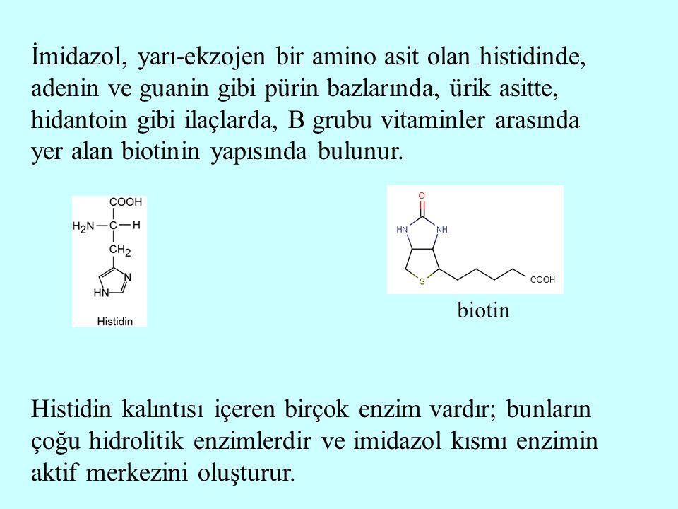 İmidazol, yarı-ekzojen bir amino asit olan histidinde, adenin ve guanin gibi pürin bazlarında, ürik asitte, hidantoin gibi ilaçlarda, B grubu vitaminler arasında yer alan biotinin yapısında bulunur.