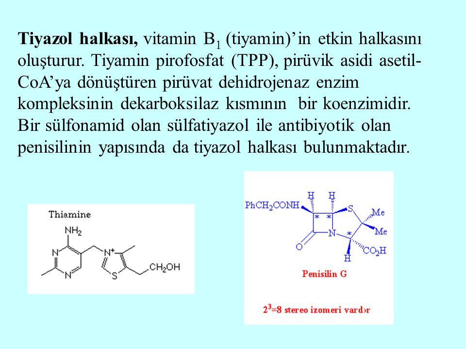Tiyazol halkası, vitamin B1 (tiyamin)'in etkin halkasını oluşturur
