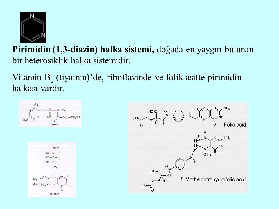 Pirimidin (1,3-diazin) halka sistemi, doğada en yaygın bulunan bir heterosiklik halka sistemidir.