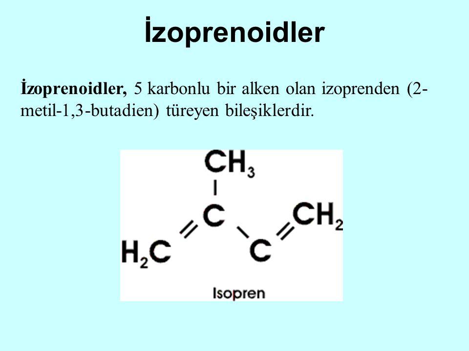 İzoprenoidler İzoprenoidler, 5 karbonlu bir alken olan izoprenden (2-metil-1,3-butadien) türeyen bileşiklerdir.
