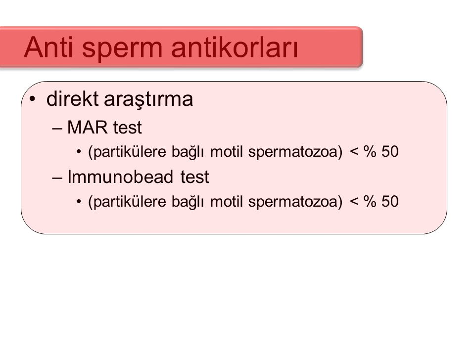 Anti sperm antikorları