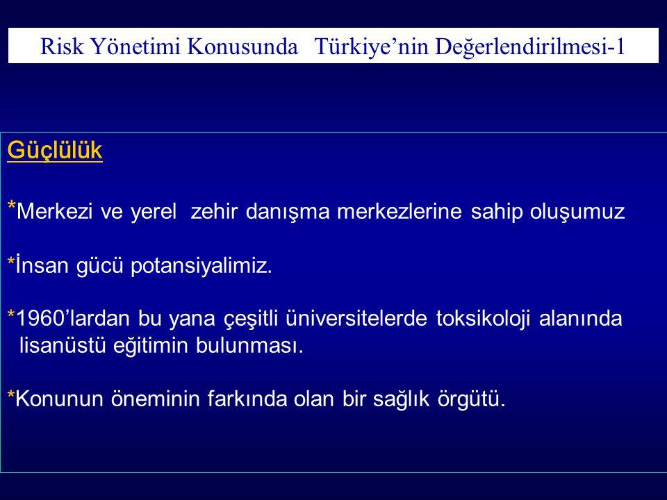 Risk Yönetimi Konusunda Türkiye'nin Değerlendirilmesi-1