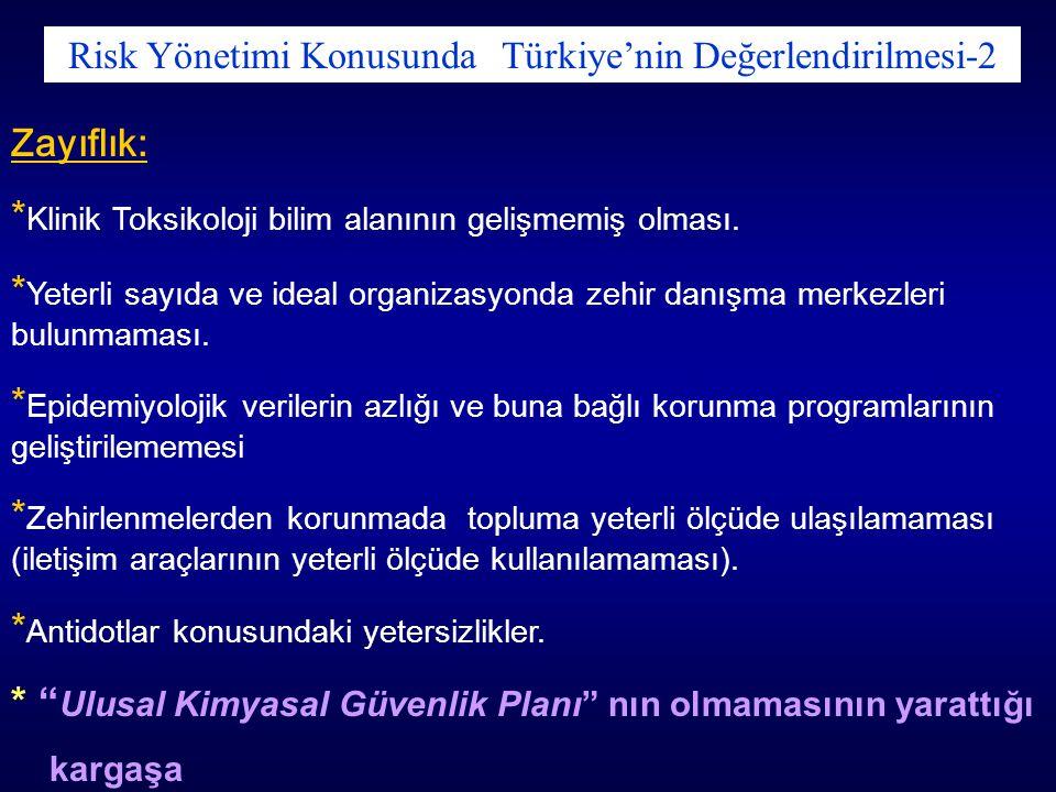 Risk Yönetimi Konusunda Türkiye'nin Değerlendirilmesi-2