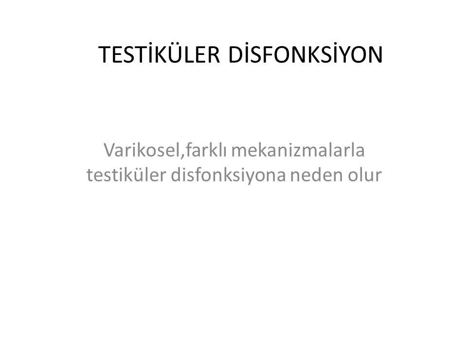 TESTİKÜLER DİSFONKSİYON